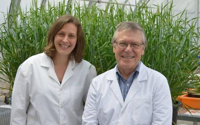 Caitlin Byrt y Steve Tyerman. (Foto: University of Adelaide)