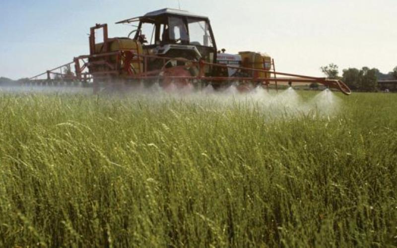 epandage-glyphosate-pesticide-champs-ok_0-1