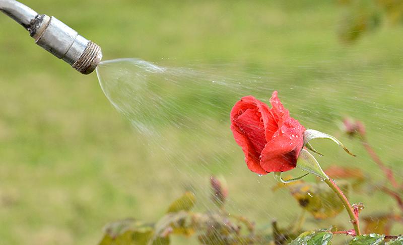 Uso sostenible de fitosanitarios en ámbitos distintos a la agricultura