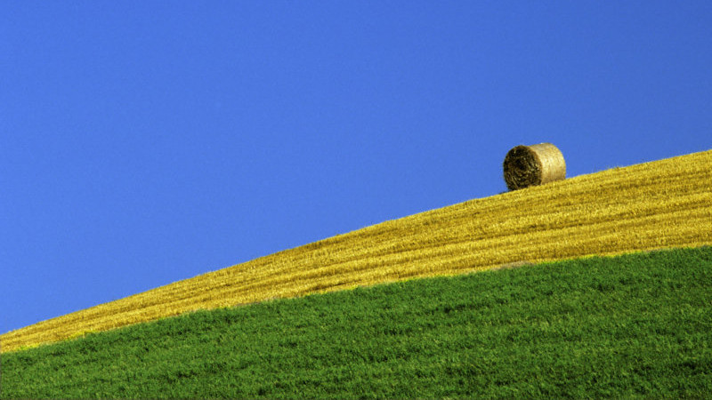 año récord para la agricultura española
