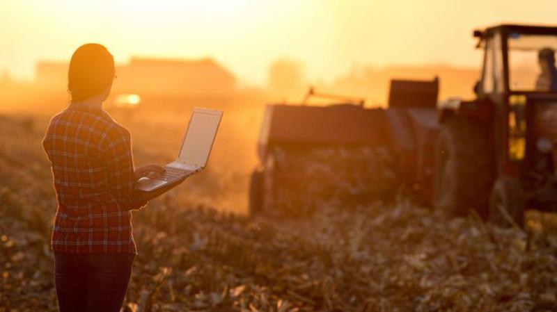 implantacion internet agricultura