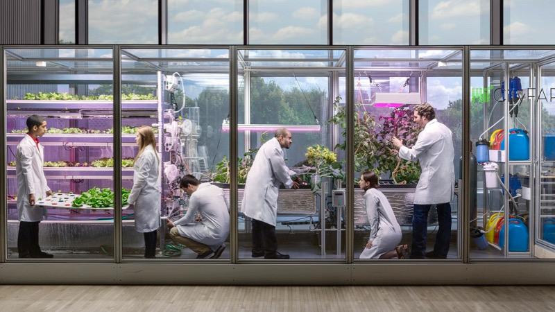 agricultura digital