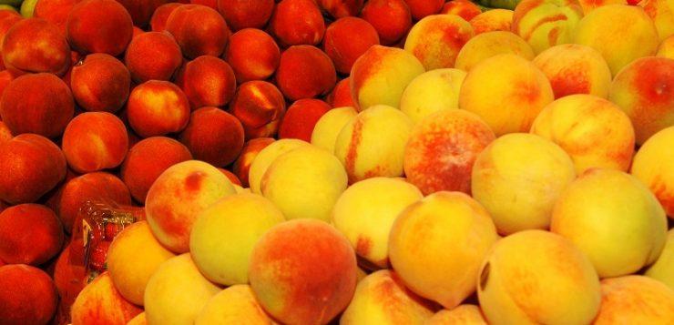 Agricultura dará ayudas por valor de 80 millones en préstamos para la mejora del sector de la fruta dulce