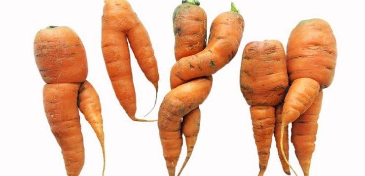 La apariencia en fruta y hortalizas no debería ser lo más importante