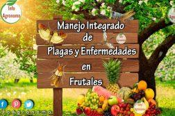 frutales y plagas