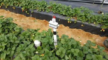 agua-de-cultivo