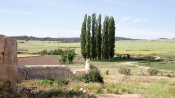 la-junquera-finca-cultivo-ecologico