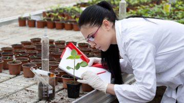 agrotecnologia-futuro-digital-agricultura