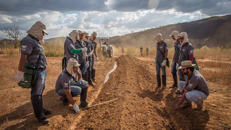 agricultores-brasil-entrenamiento-suelo