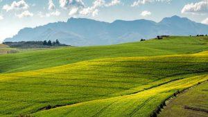 hipertextual-transformacion-digital-agricultura