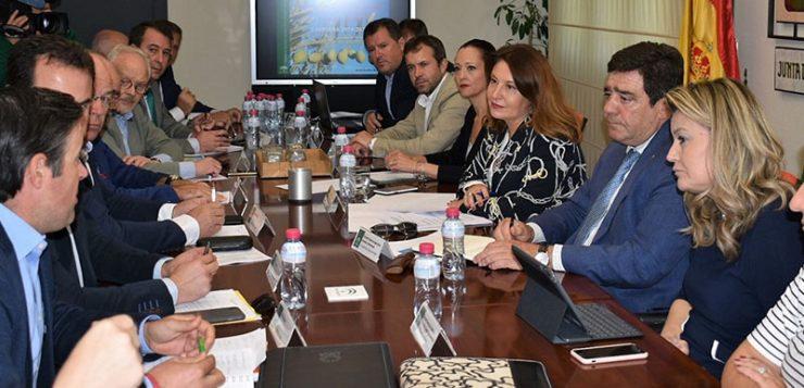 Crespo aboga por «apostar con más ahínco por la calidad y la unión» frente a los retos del sector oleícola