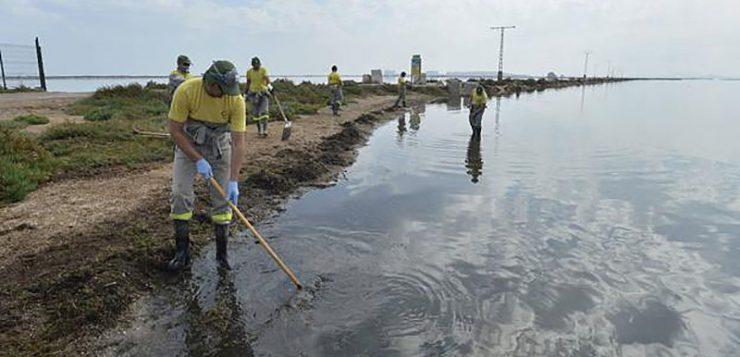 UPA pide que no se criminalice al sector agrario en la protección del Mar Menor