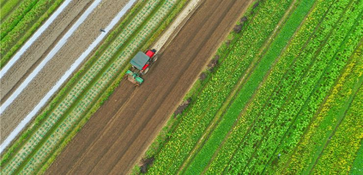 Agricultura y coronavirus