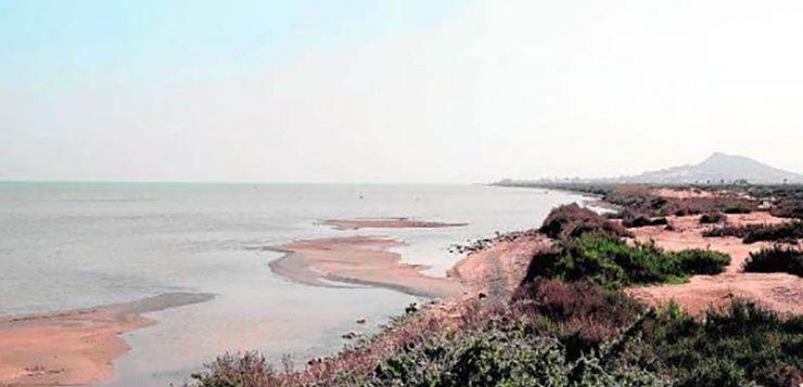 La sostenibilidad del Campo de Cartagena pasa por modernizar la desalación y optimizar el riego